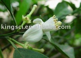Plant extract,Citrus Aurantium L. Hesperidin,Diosmin