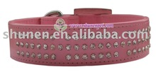 dog product,dog collar