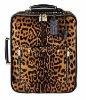 trolley bag,bag,travel bag
