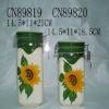 ceramic canister sets (CN89819)