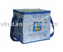 PP woven keep warm bag