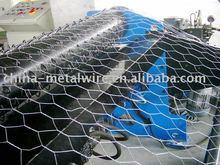 Triple Twist Hexagonal Mesh ( Factory Price)