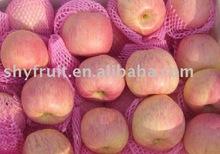 export shaanxi fuji apple