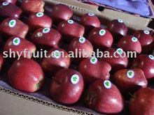 export huaniu apple