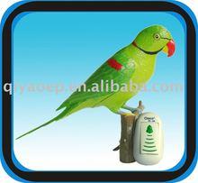 Wireless Doorbell Message Recordable Parrot Design