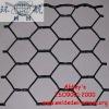 Hexagonal Wire Mesh/Netting (PVC & Galvanized)