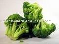 Broccoli Extract 0.4% Sulforaphane indole-3-carbinol