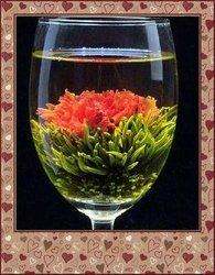 blooming tea PR11
