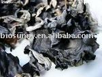 Black Mushroom Extract Powder