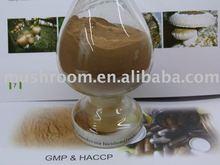 Maitake mushroom extract,Maitake extract,Maitake polysaccharide