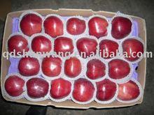 top A fresh red hua niu apple