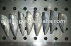 frozen food (horse mackerel HGT)