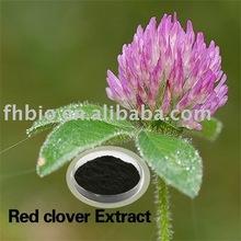 Clover Powde/Clover Isoflavones/red clover