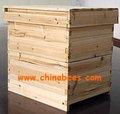 Attrezzature per apicoltura bee hive, casa delle api