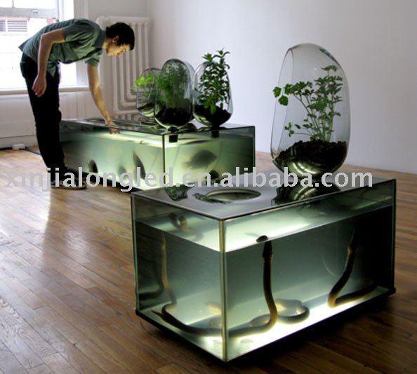 goldfish tank. tank ,goldfish aquarium