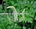 Natural plant black cohosh extract triterpenoid saponins 2.5%