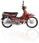Motorcycle C100
