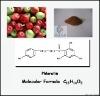 Phloretin of 98%