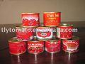 Pasta de tomate condimento