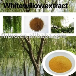 White Willow Bark Extract for Anti-rheumatism