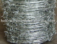 2012 the hot Barbed wire (Factory)