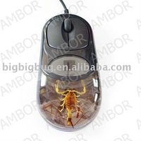 USB Optical Computer Mouse,Real Insect Inside