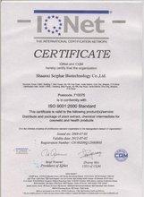 High quality Schisandra P.E.-schisandra chines extract powder-ISO9001 Passed Factory