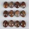 C197 Pietersite Gemstone Puffy Oval Cabochon semi-precious gemstone