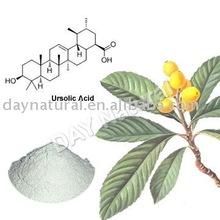 Ursolic Acid HPLC 20%-98% Loquat Leaf Extract