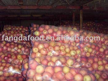 shanxi fuji apples(small size)