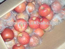 Shanxi Province Fuji Apple