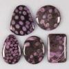 C288 Nipomo coral fossil cabochon semi-precious gemstone wholesale