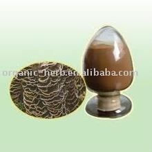 Yunzhi Extract Polysaccharide/Coriolus Versicolor Extract