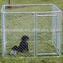 Kennels Dog