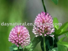 Red Clover P.E.--Manufacturer