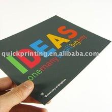 2011 New Promotional Sample Leaflets