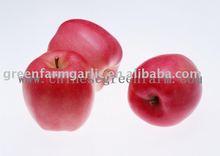 Chinese Fresh Red Fuji Apple in 18kg/20kg carton