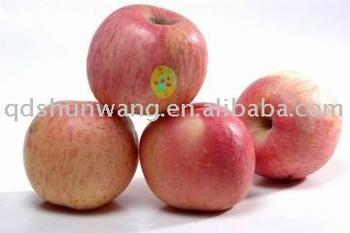 supply fresh fuji apple for high quantity