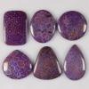 C286 Coral fossil cabochon semi-precious gemstone wholesale