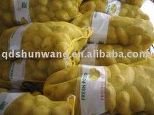 2011 fresco de la patata, Nueva semilla de papa