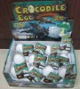 Growing Hatching Crocodile Egg Toy