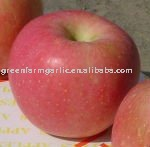 Greenfarm Best Quality Red Fuji Apple
