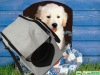 Stylish White pet dog bag