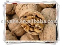 Walnut Flavour