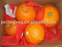 good quality fresh saffron pumpkin