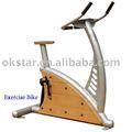 WPC im Freieneignung-Ausrüstung - Übungs-Fahrrad