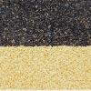 black sesame seeds organic