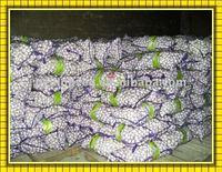 chinese fresh garlic(in china)