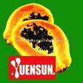 Papaya ekstresi papain NSF-GMP onayı 2,000,000 gr/u/cildin yeniden