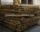 Moso bamboo pole